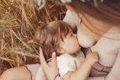 Anne Sütünü En Çok Arttıran Yiyecekler Nelerdir